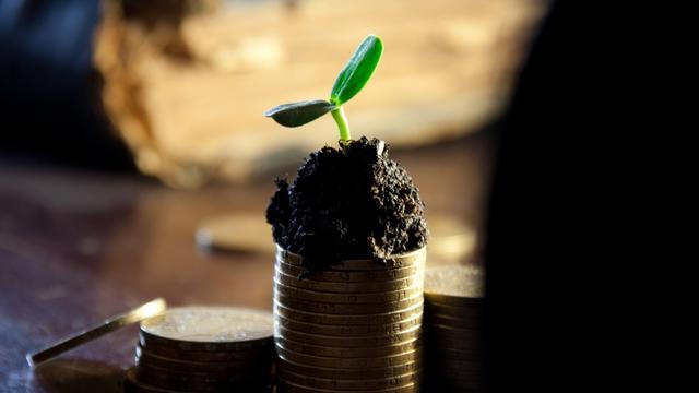 Big money bank deposit grow up income dividends coins